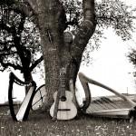 Von souveränen Menschen & Bäumen